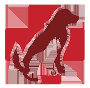 Veterinarian in Fort Smith, AR.