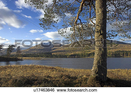 Stock Images of Scotland, Highland, Fort William, Snow capped.