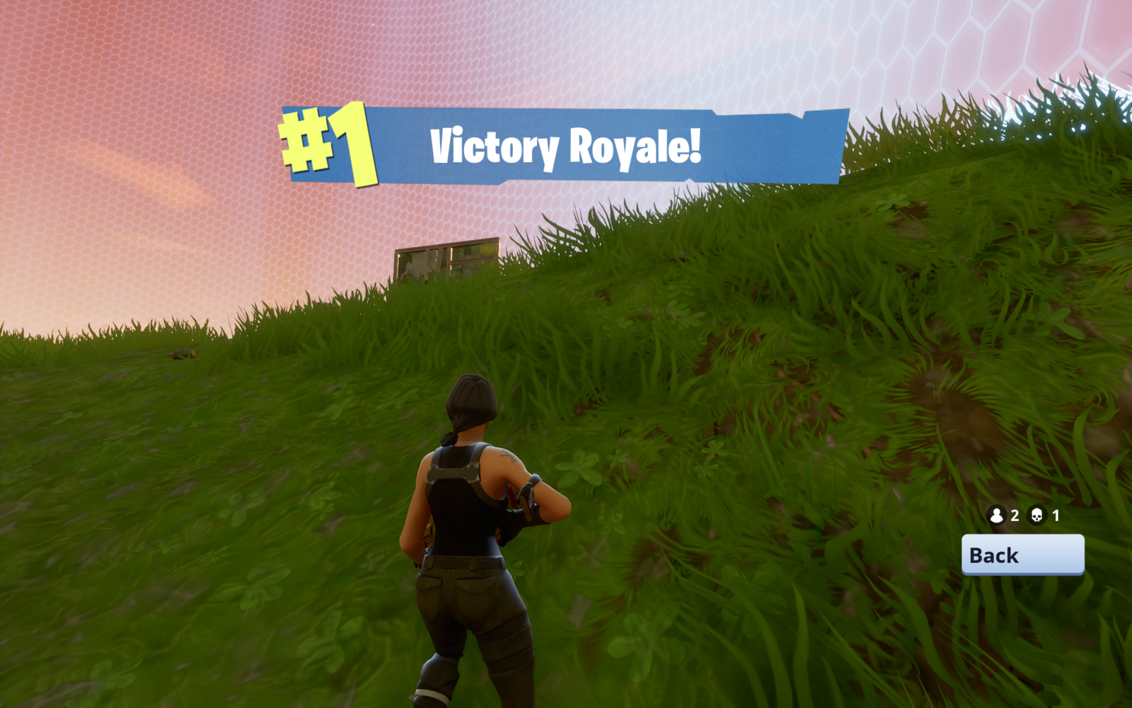 Victory Royale PNG HD #47381.
