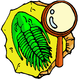 Fossil Clipart.