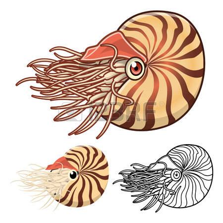 207 Fish Fossil Stock Vector Illustration And Royalty Free Fish.