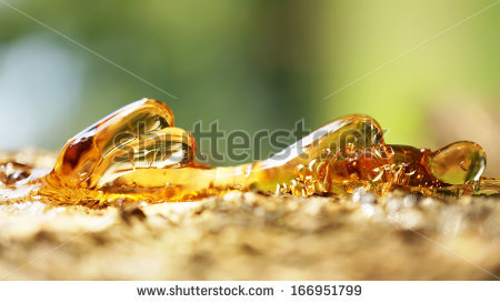 Fossilized Tree Resin Stock Photos, Royalty.