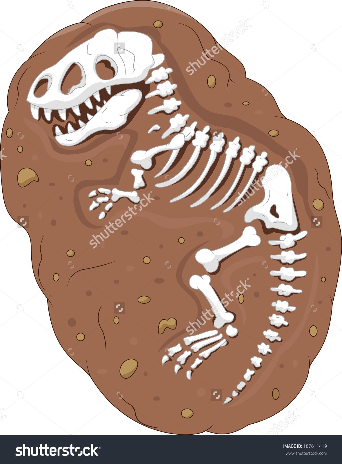 Fossils Cartoon.