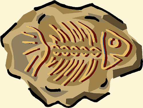 Fossils background clipart.