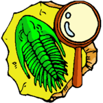 Fossils Clipart.