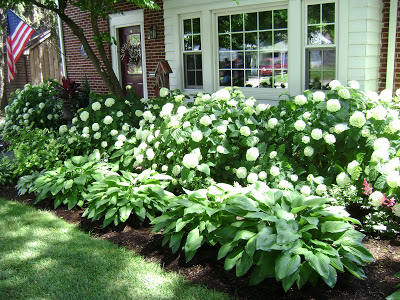 1000+ ideas about Foundation Planting on Pinterest.