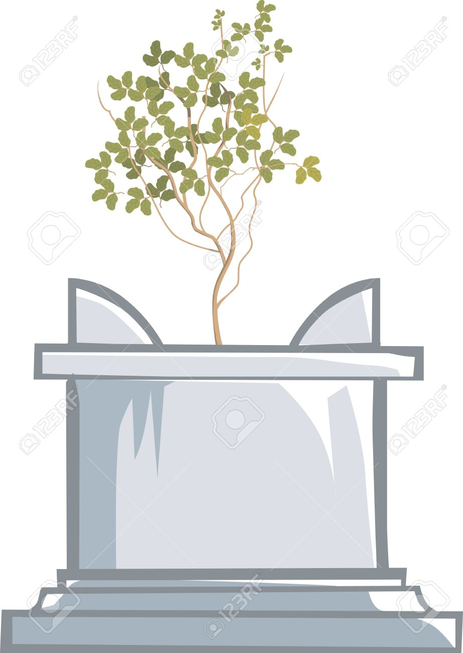 Tulsi plant clipart.