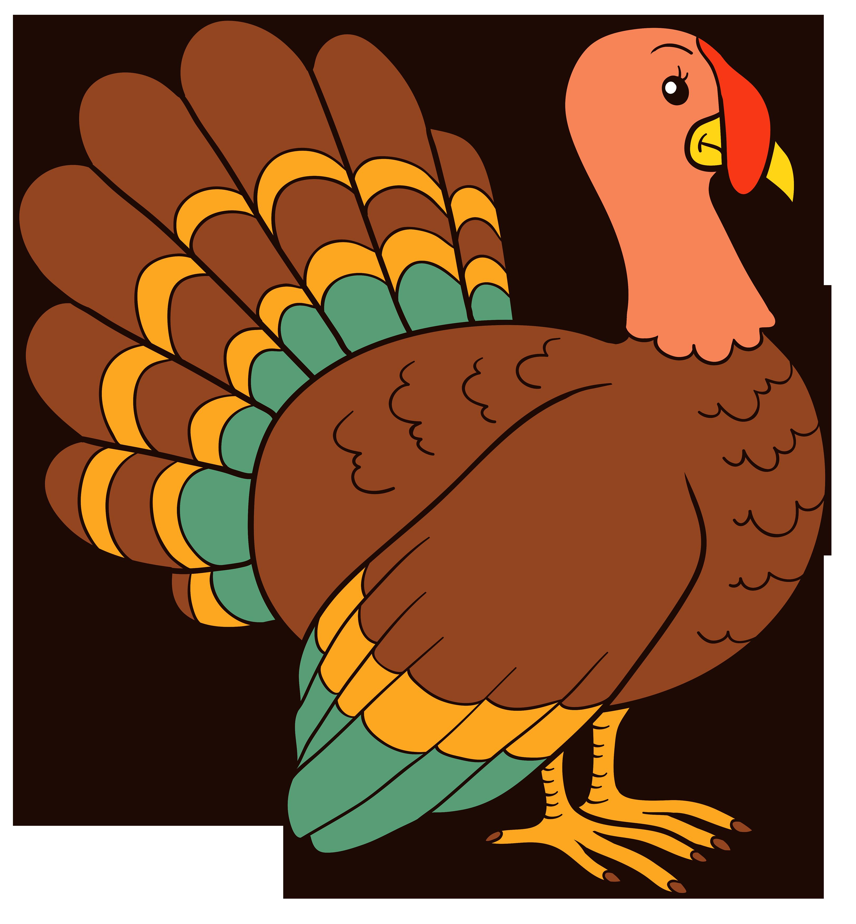 Turkey bird clipart.