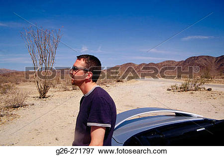 Picture of Man leaning by a car. Ocotillo cactus (Fouquieria.