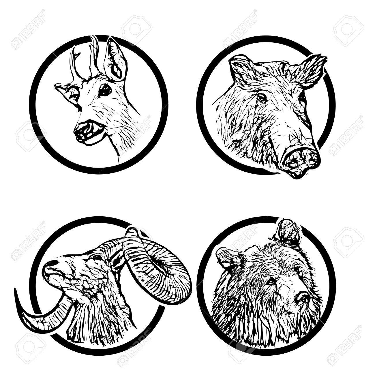 Four Forest Animals In The Rings Royalty Free Cliparts, Vectors.