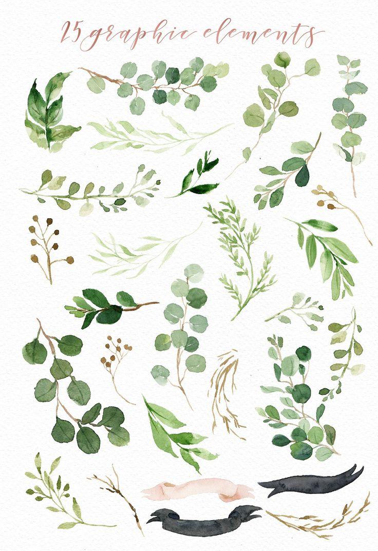 1000+ ideas about Leaf Illustration on Pinterest.