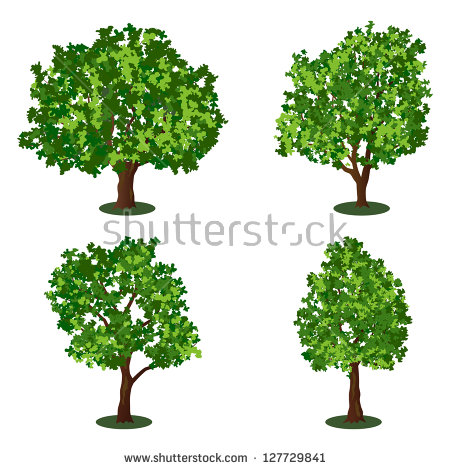 Set Four Trees Isolated Against Pure Stock Photo 57497971.