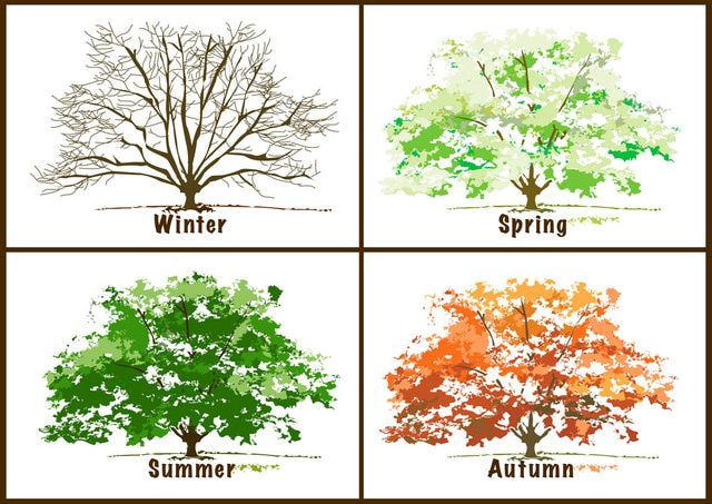 Beautiful, Free Clip Art for the 4 Seasons.