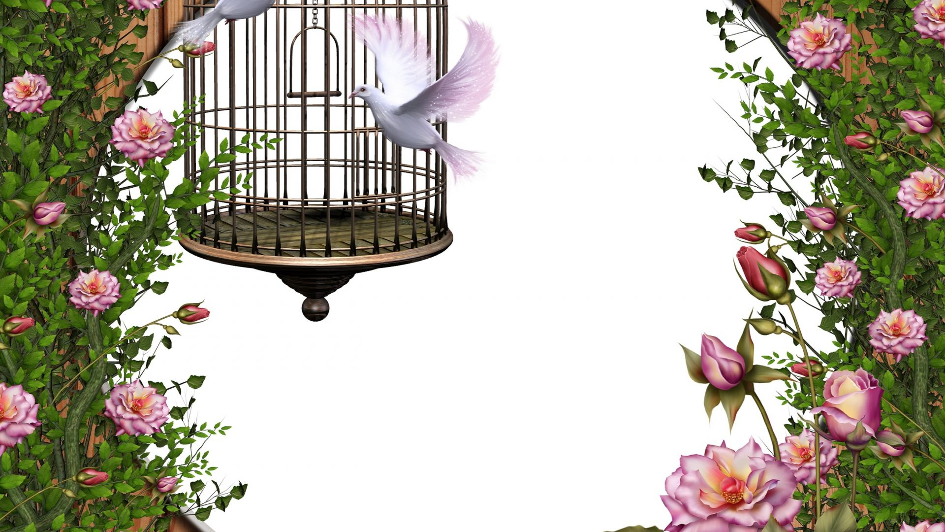 Flower: FREEDOM Clipart Stock Birds Roses Softness Beauty Love.