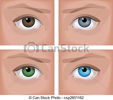 Four eyes Vector Clipart EPS Images. 984 Four eyes clip art vector.