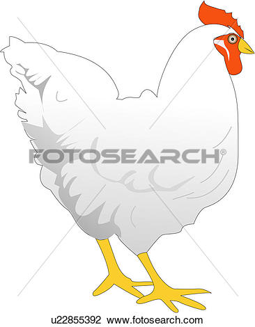 Clipart of fowl, animal, birds, bird, vertebrate, fowls u22855392.