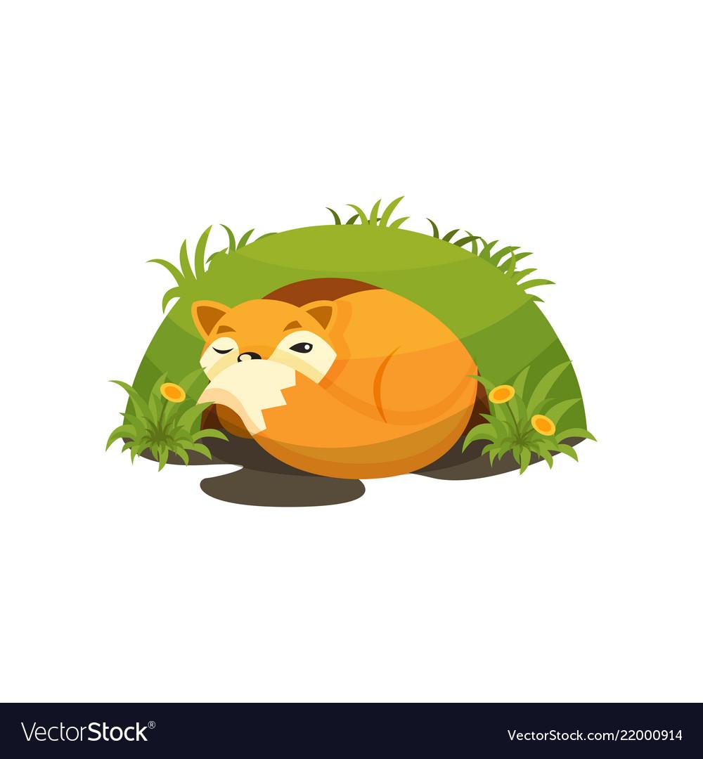 Cute fox sleeping in a den on.