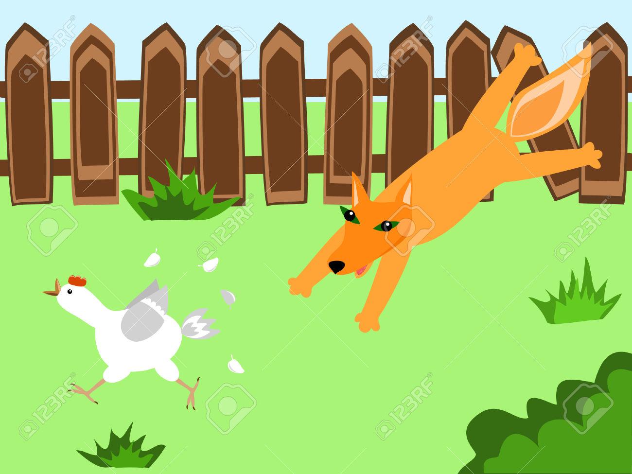 A Fox Hunting A Hen At The Farmyard Royalty Free Cliparts, Vectors.