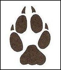 Fox Paw Print.