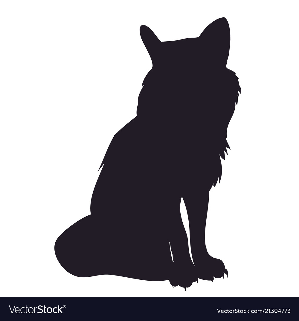 Fox stands silhouette.