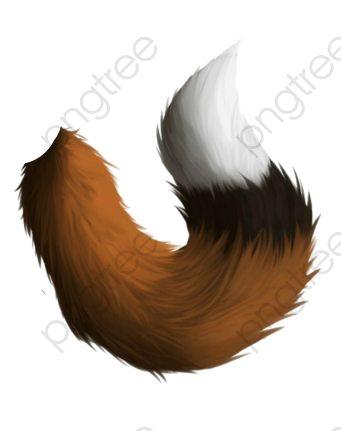 Fox Tail, Fox Clipart, Hand Painted, Tail PNG Transparent Image and.