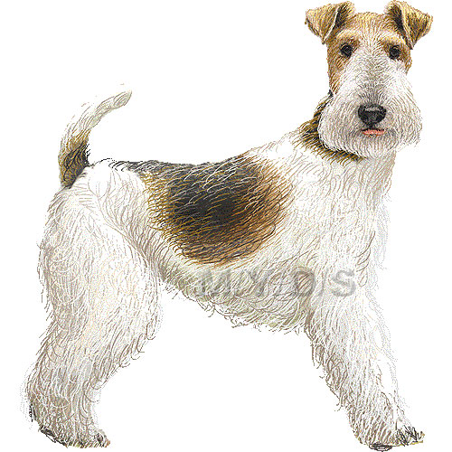 Terrier Clipart Clipground