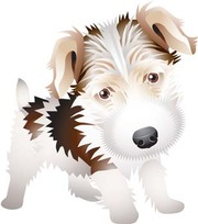 Wire Haired Fox Terrier Clip Art, Vector Wire Haired Fox Terrier.