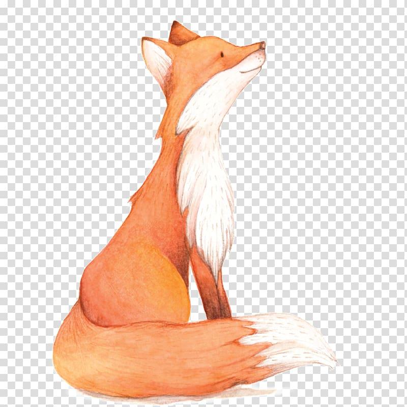 Watercolor painting Fox , Watercolor Fox, fox illustration.