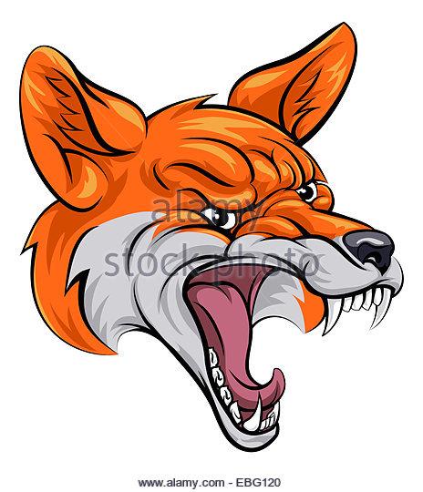 Snarling Fox Stock Photos & Snarling Fox Stock Images.