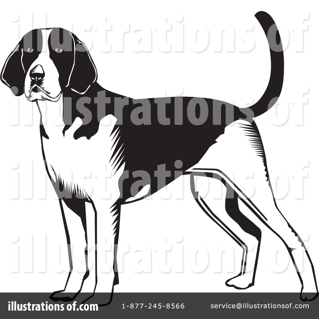 American Foxhound Clipart #26528.