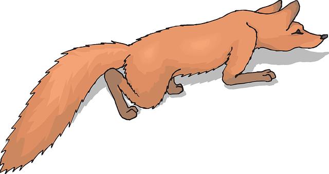 Fox tail clipart.
