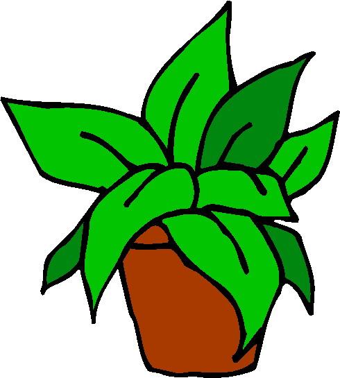 Clipart pflanze.
