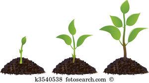 Pflanze Clipart Illustrationen. 378.293 pflanze Clip Art Vektor.