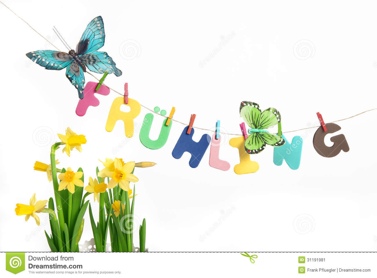 Letters Saying Spring With Butterflies Next To Daffodil Stock.