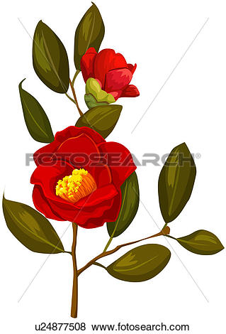 Clip Art of fragrant, plant life, close.