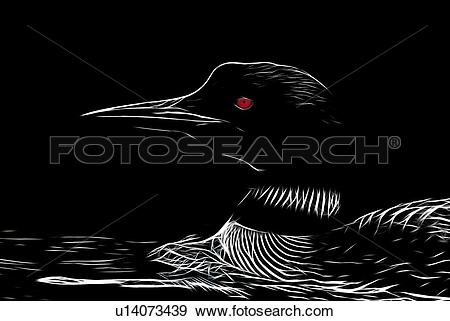 Stock Photograph of Fractalius rendering of Common Loon (Gavia.