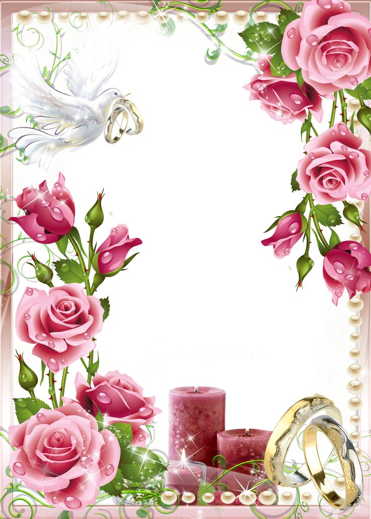 frame clipart wedding png - Clipground