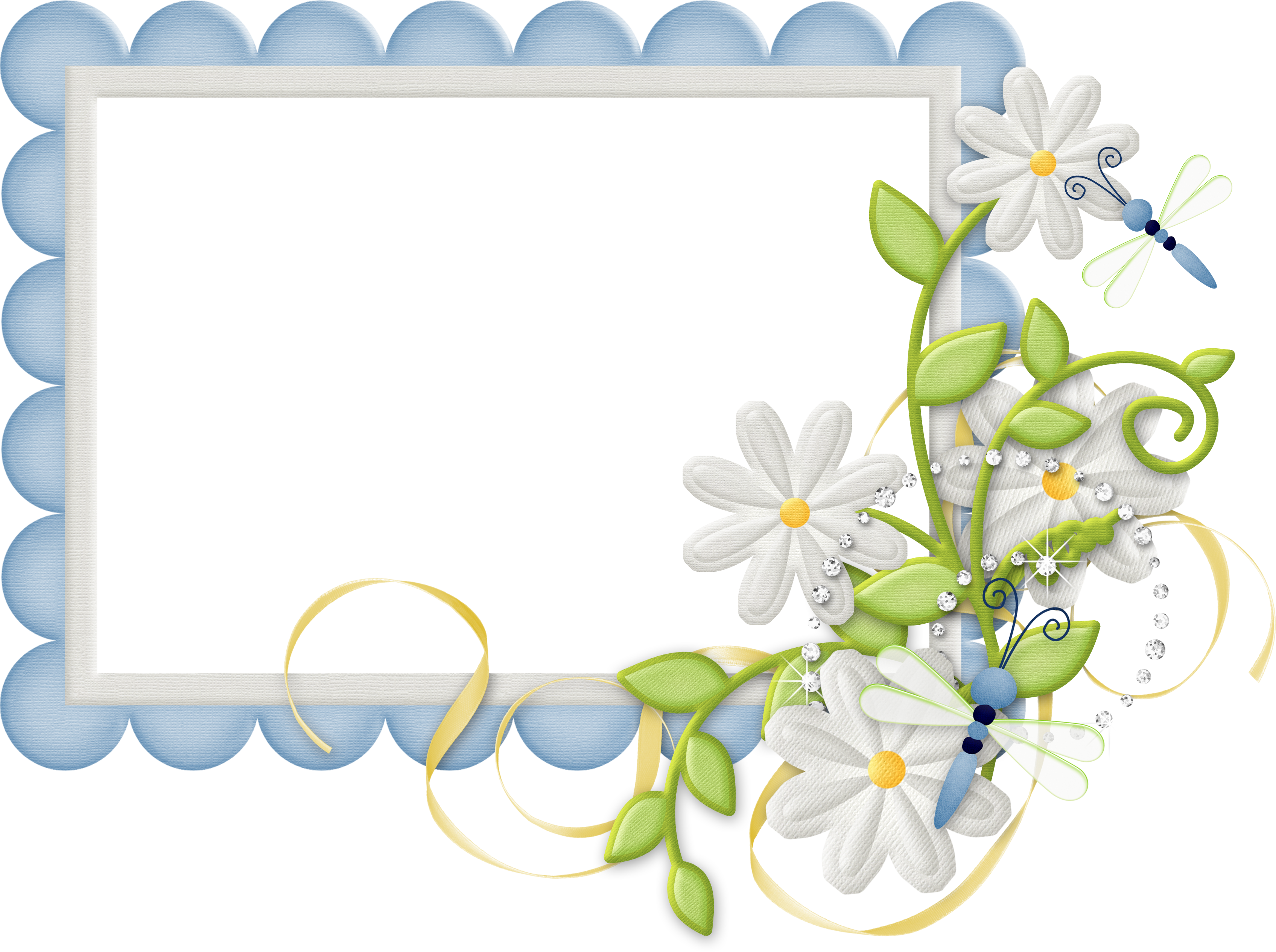 Cute Large Design Blue Transparent Frame with Daisies.