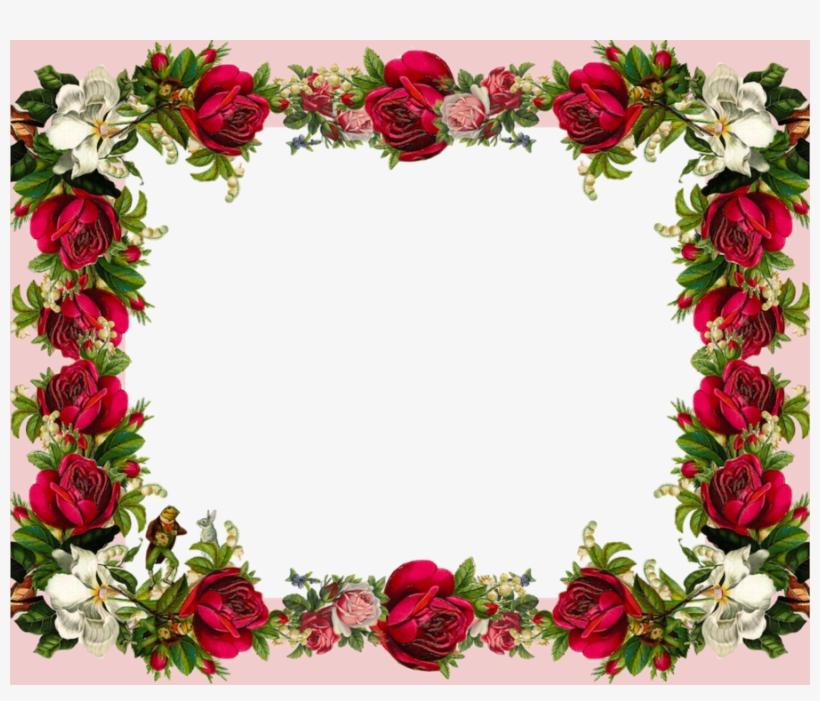 Download Rose Flower Frame Clipart Picture Frames Rose.