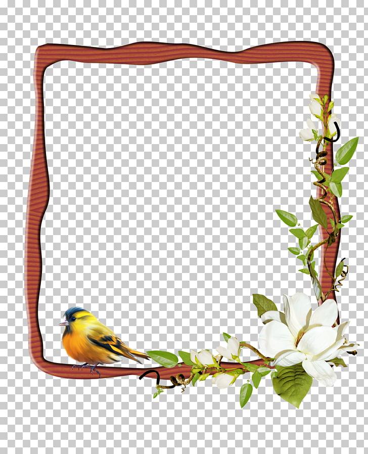 Frames Digital photography, marco para invitacion de.