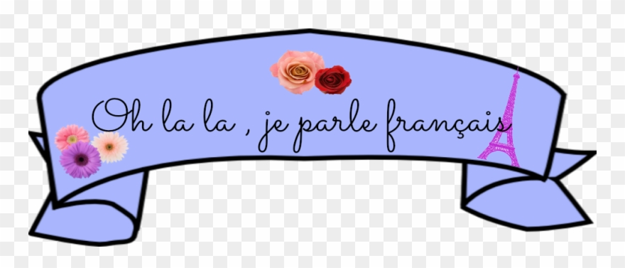 French Banner Francais.