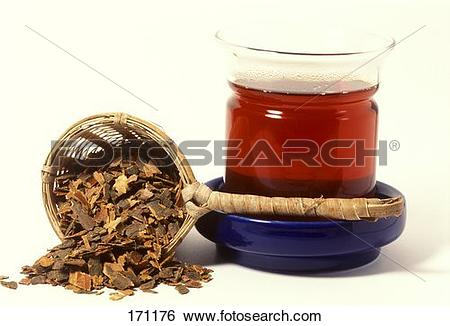Black alder Stock Photos and Images. 236 black alder pictures and.