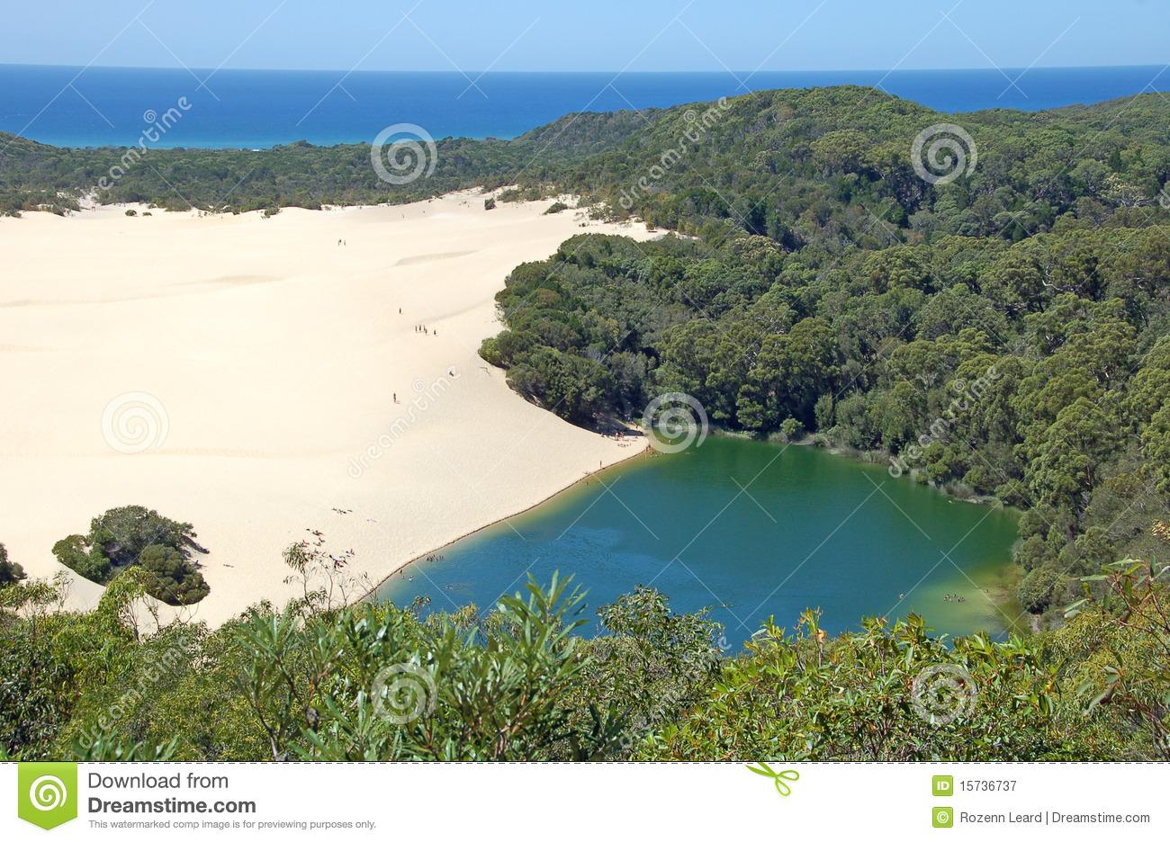 Lake Wabby, Fraser Island, Australia Royalty Free Stock.