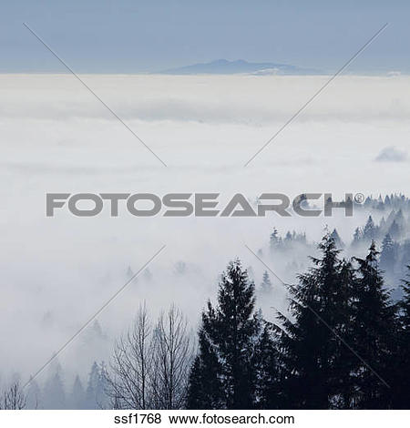Pictures of Up above Coquitlam and the Fraser Valley shrouded in.