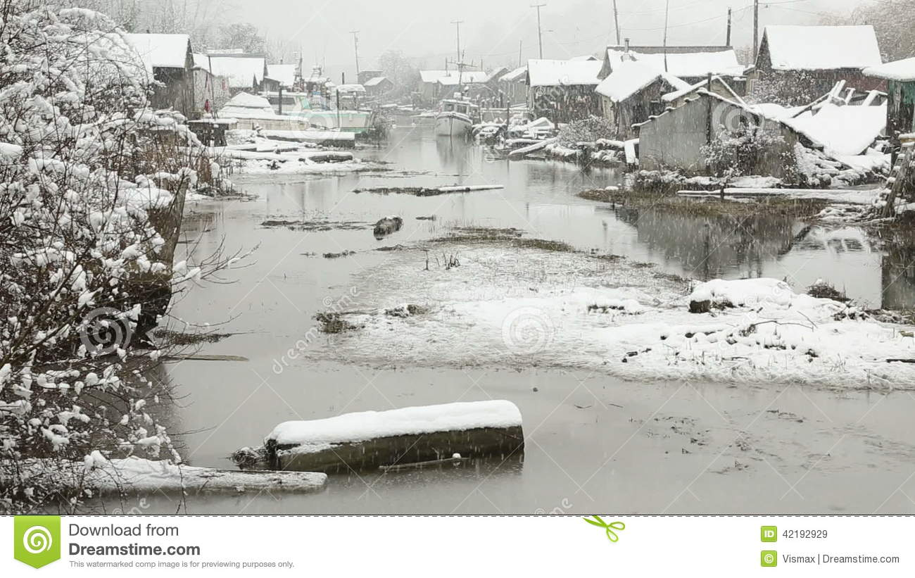 Fraser River Snow Stock Video Footage.