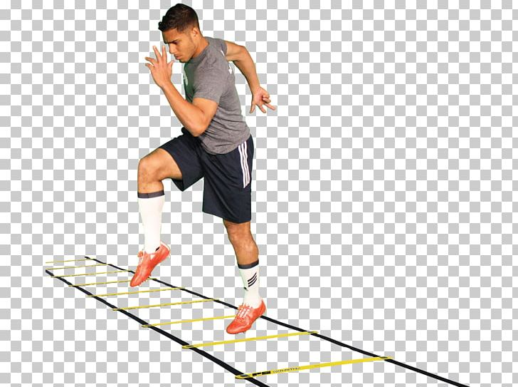 Agility Exercise Ladder Sport Skill PNG, Clipart, Agility.