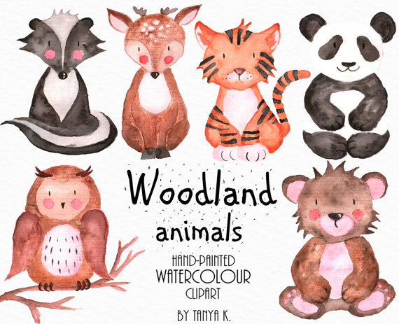Woodland Animals, Watercolor Clipart, Commercial Use, Owl, Bear.