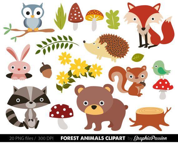 Forest Animals Baby Digital Clipart / Woodland Animals Clip art.