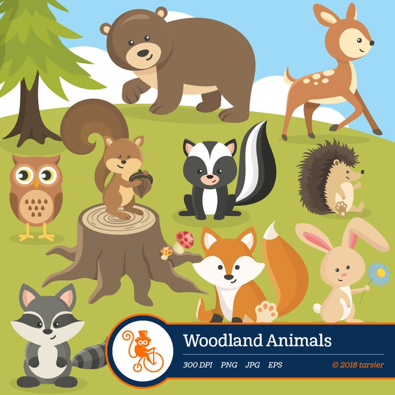 Woodland Animals clip art, Forest animal clipart images Royalty free and  commercial use Includes fox raccoon deer squirrel bear owl rabbit.