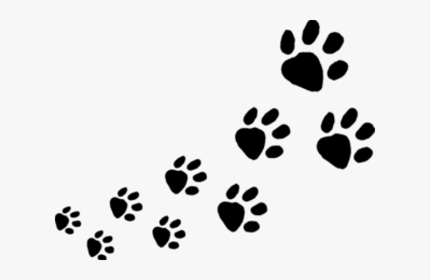 Transparent Dog Paws Clipart.